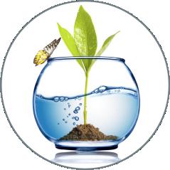milieuaanvragen